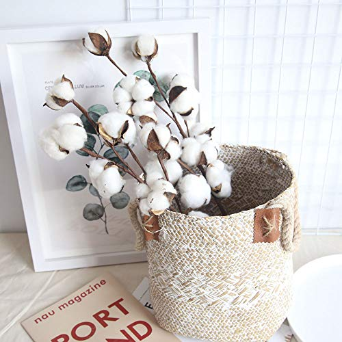 Cotton Christmas Ornaments - Clearance Tuscom Farmhouse Naturally Dried Cotton Stems, 21 inch Artificial Flower Filler Florals,for Wedding Bouquet Party Home and Garden Coffee House Decor (White)