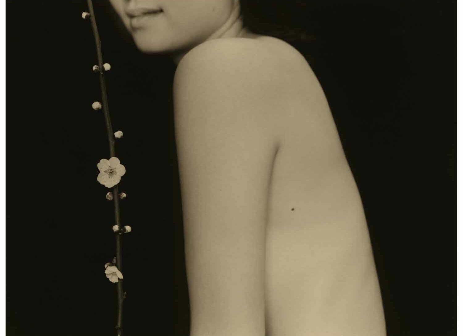 Yamamoto Masao (A set of 3 silver prints, a silk-bound book of platinum prints and a monograph) by