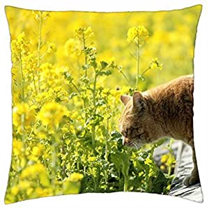A city cat smelling the flowers - Throw Pillow Cover Case (18