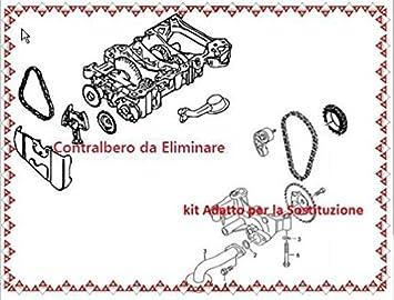 Kit Elimina contralberi controrotanti la bomba aceite 2.0 TFSI Gasolina: Amazon.es: Coche y moto
