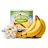 Saratoga Farms Freeze Dried Banana Slices