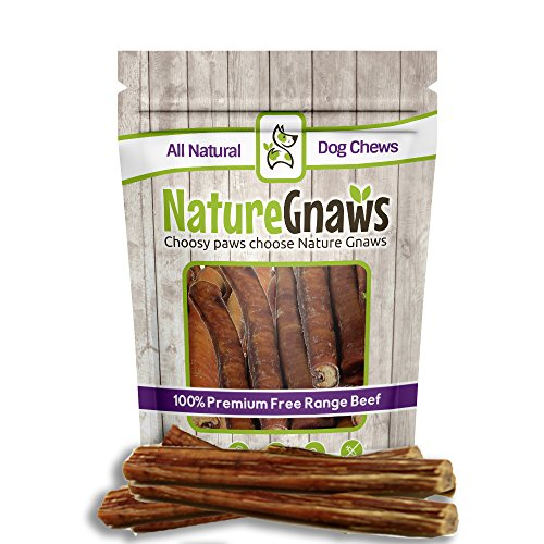 Nature Gnaws Jumbo XL Bully Sticks 11-12 inch (6 Pack) - 100% All Natural Grass-Fed Free-Range Premium Beef Dog Chews - Our Longest Lasting Bully Stick for Large Breeds