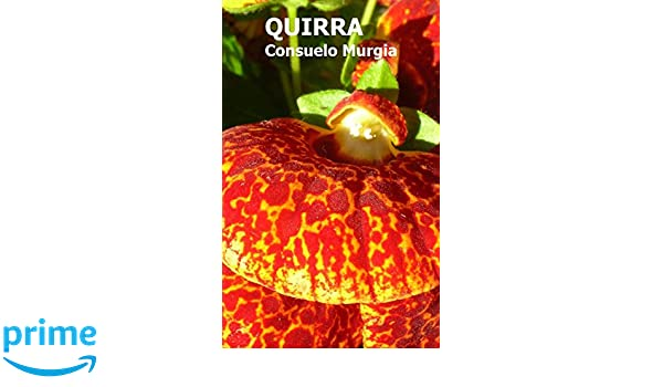Quirra (Spanish Edition): Consuelo Murgia: 9781484138151: Amazon.com: Books