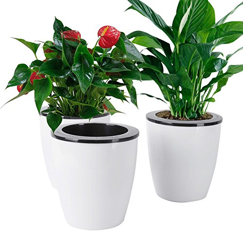 Vencer 3 Pack Self Watering Plante Flower Pot - Suitable for sale  Delivered anywhere in USA