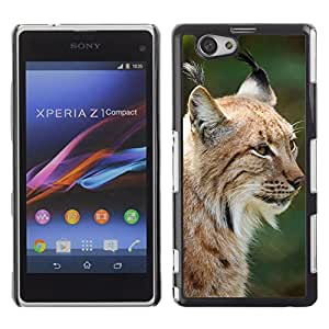 Hot Style Cell Phone PC Hard Case Cover // M00114957 Animal Beast Big Carnivore Cat // Sony Xepria Z1 Compact D5503