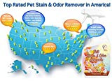 Pet Stain & Odor Miracle - Enzyme Cleaner for Dog