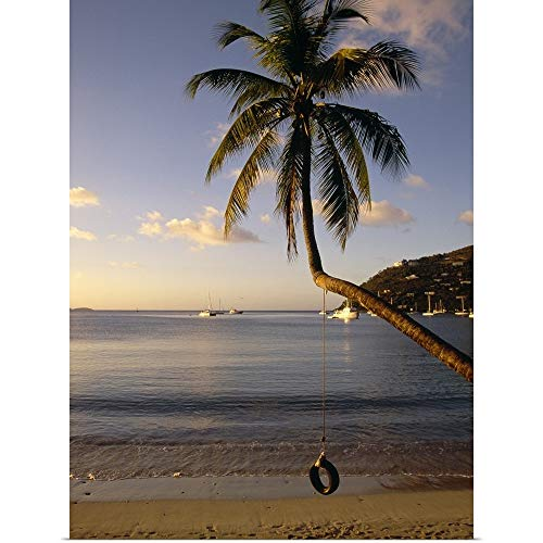 GREATBIGCANVAS Poster Print Entitled Swing on a Palm Tree, Cane Garden Bay, Tortola, British Virgin Islands by - Virgin British Bay Tortola