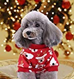 BWOGUE Small Pet Dogs Christmas Costumes Cute Santa Claus Rudolph Reindeer Xmas Pet Clothes for Dog Pajamas Soft Suit Shirts,Small
