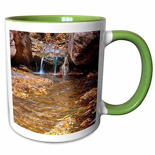 3dRose Danita Delimont - Streams - USA, Utah, Zion National Park, Middle Emerald Pool. - 15oz Two-Tone Green Mug (mug_206997_12) ()