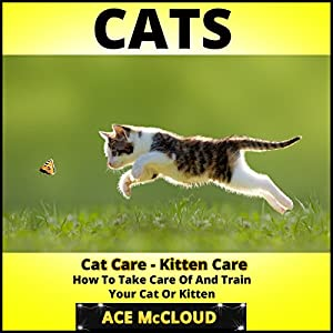 Cats: Cat Care- Kitten Care- How to Take Care of and Train Your Cat or Kitten Audiobook