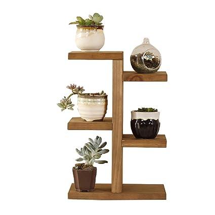 Amazon.com: Estantería de madera para exhibir plantas ...