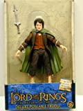 Lord Of The Rings ROTK Frodo 8
