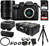 Panasonic Lumix DC-GH5 Mirrorless Camera Filmmaking Kit w/ H-ES12060 Optical I.S., 12-60mm Professional Bundle