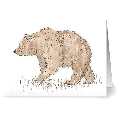 Bear Blank - 2