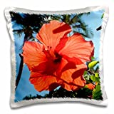 3dRose Dark Orange Hibiscus State Flower of Hawaii - pillow Case, 16 by 16-Inch (pc_107150_1)