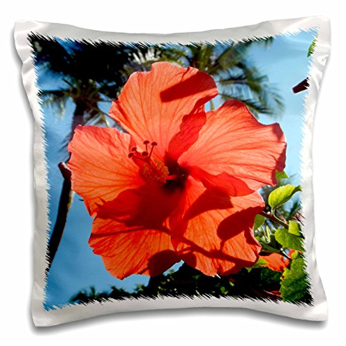 3dRose Dark Orange Hibiscus State Flower of Hawaii - pillow Case, 16 by 16-Inch (pc_107150_1) by 3dRose