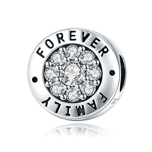 WOSTU 925 Sterling Silver Family Forever Bead Charms fit Charm Bracelets Cubic Zirconia Pendant Charms