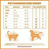 Best Pet Supplies, Inc. Voyager Step-in Lock Dog