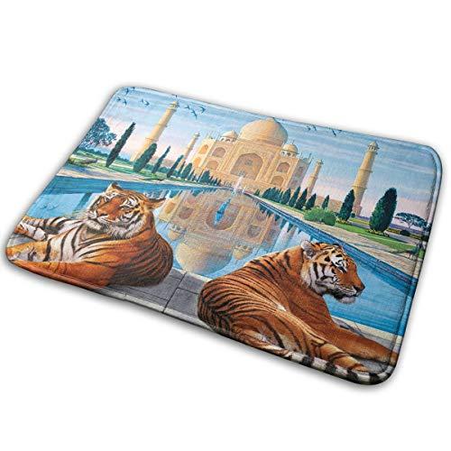 DENETRI DYERHOWARD Bath Mat Taj Mahal Non Slip Bath Rug Washable Bathroom Soft Kitchen Floor Door ()