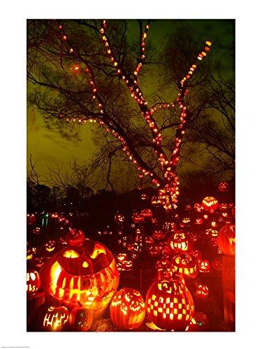 Jack o' Lanterns lit up at Night, Roger Williams Park Zoo, Providence, Rhode Island, USA Art Print, 20 x 26 inches -