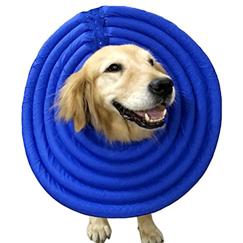Alfie Pet by Petoga Couture - Toby Waterproof Recovery Collar for Dogs and Cats - Color: Blue, Size: XXL