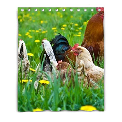 Hen Rooster Chickens Blackout Window Curtain Polyester Fabri