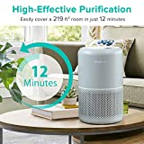 LEVOIT Air Purifier for Home with H13 True HEPA