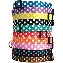 """Yellow Dog Design Watermelon Polka Dot Dog Collar with Tag-A-Long ID Tag System-Medium-1"""" Neck 14 to 20"""""""