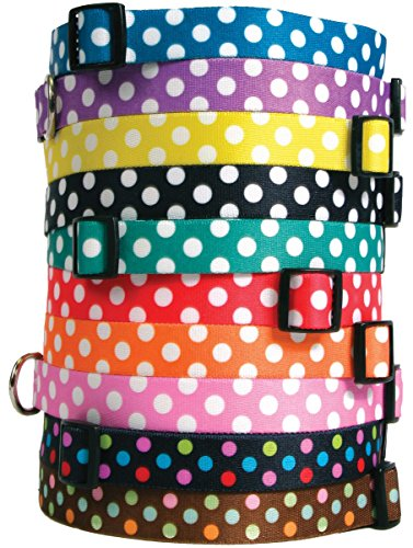 Essentials For A Nerd Costume (Polka Dot Dog Collar - with Tag-A-Long ID Tag System - Grape - Large 18 to 28 inch length x 1 inch wide)