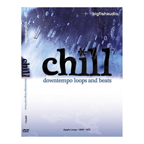 Big Fish Chill: Downtempo Loops and Beats Audio Loops