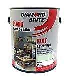how to paint house exterior Diamond Brite Paint 11600 1-Gallon Flat Latex Paint Mist Green