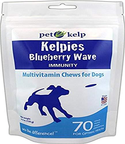 Pet Kelp Blueberry Wave Dog Supplement, 4.2Oz