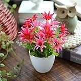 Lqwx Potted Flowers / Small Bonsai Plants Green Plastic /15Cmx16Cm,Gray