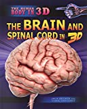 img - for The Brain and Spinal Cord in 3D (The Human Body in 3D) book / textbook / text book