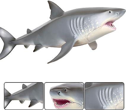 Hatching Shark Kids Pocket Money Toy