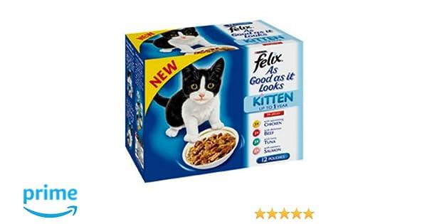 Pack de 12 bolsitas de gelatina para gatos
