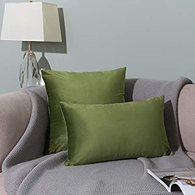 Imbuty 2 Packs Luxurious Soft Velvet Solid Color Decorative Pillow Covers 18 x 18 for Sofa Couch Bed