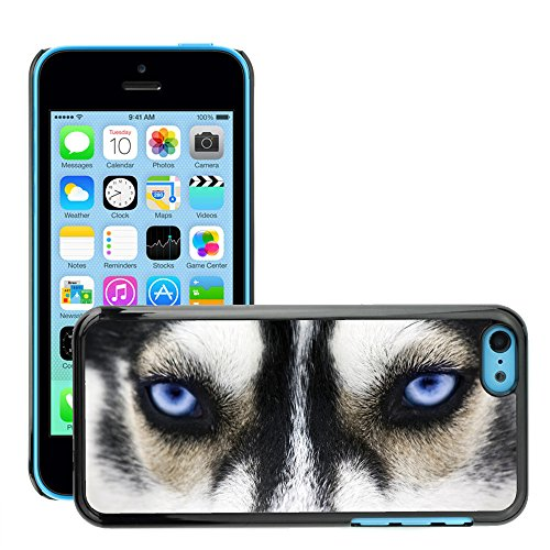 Premio Sottile Slim Cassa Custodia Case Cover Shell // V00002125 Yeux bleus // Apple iPhone 5C