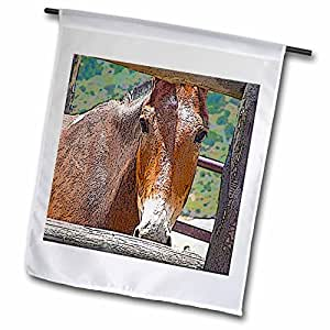 Jos Fauxtographee Realistic - Beautiful Close Up of Tand White Horse Behind Wooden Fence in Vibrant Color and Posturized - 12 x 18 inch Garden Flag (fl_49520_1)