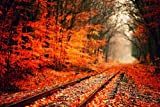 Red Autumn Leaves and Trees, Railroad - Art Print Poster,Wall Decor,Home Decor(36x24inches)