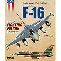 Fighting falcon tome 2