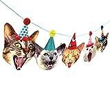 Photographic Felt Birthday Cats Garland