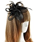 Coolr Fascinator Hair Clip Cocktail Headwear Flower Bridal Headpieces (Black )