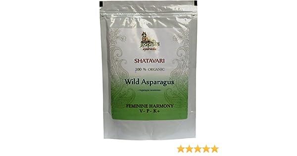 Shatavari (Asparagus racemosus) en polvo, Certificado ecológico por LACON GmbH en Europa, Suplemento de hierbas 100% natural ecológico, Planta tradicional ...
