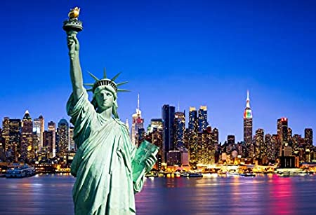 FHZON 10x7ft Statue of Liberty Backdrop for Photography New York City Sunset Background Theme Party Video Studio Props PFH630