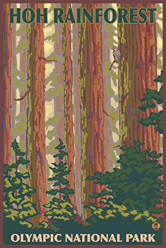 Forest Signed - Olympic National Park, Washington - Hoh Rainforest (12x18 SIGNED Print Master Art Print w/Certificate of Authenticity - Wall Decor Travel Poster)