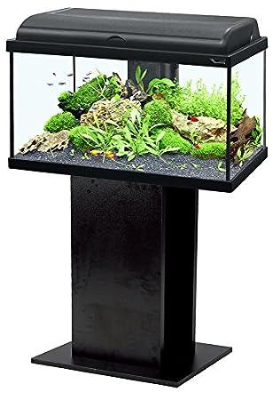 Conjunto Acuario AquaDream 60 Negro LED + mueble: Amazon.es: Productos para mascotas