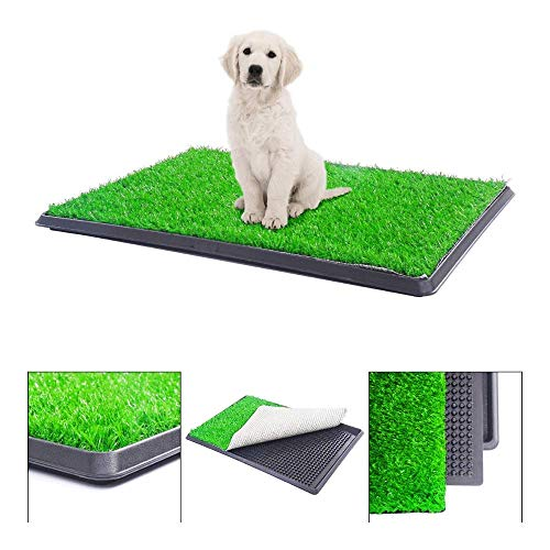 "BringerPet 30""x20"" Puppy Pet Potty Training Pee Indoor Toilet Dog Grass Pad Mat Turf Patch"