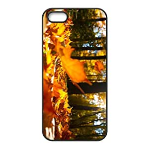 linJUN FENGThe Autumn Hight Quality Plastic Case for Iphone 5s