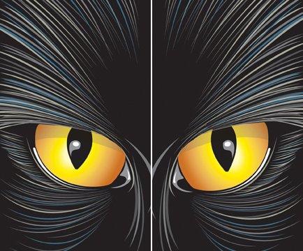 Cat-rageous the Beast Translucent Window Decorations
